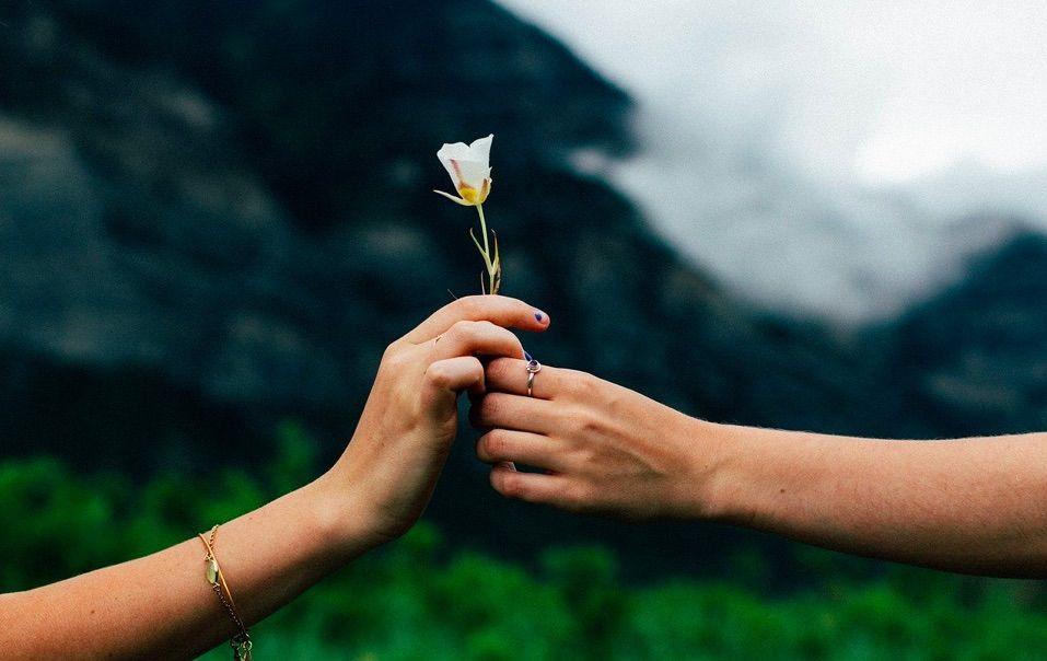 En este apartado explicamos en que momentos se puede solicitar y surte efectos la reconciliación matrimonial.