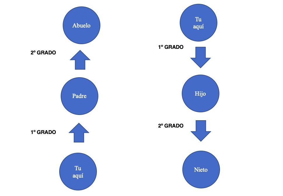esquema explicativo línea ascendente y descendente hasta el segundo grado para saber quien está exento de declarar