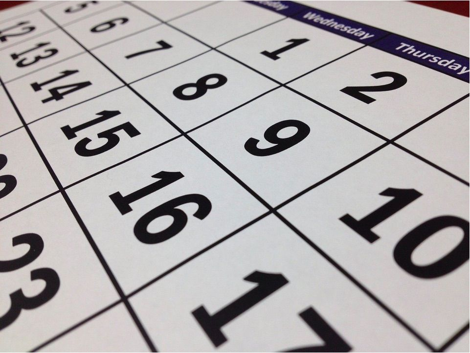la forma habitual de custodia es la semanal o quincenal