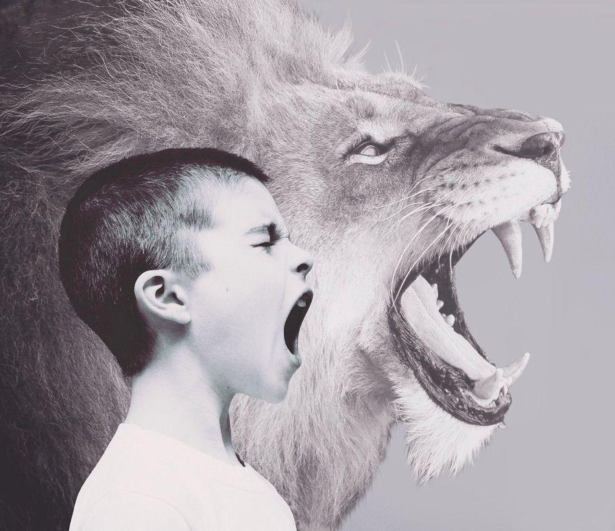 Las causas personales o las caracteristicas personales del agresor es uno de los supuestos que provoca acoso escolar