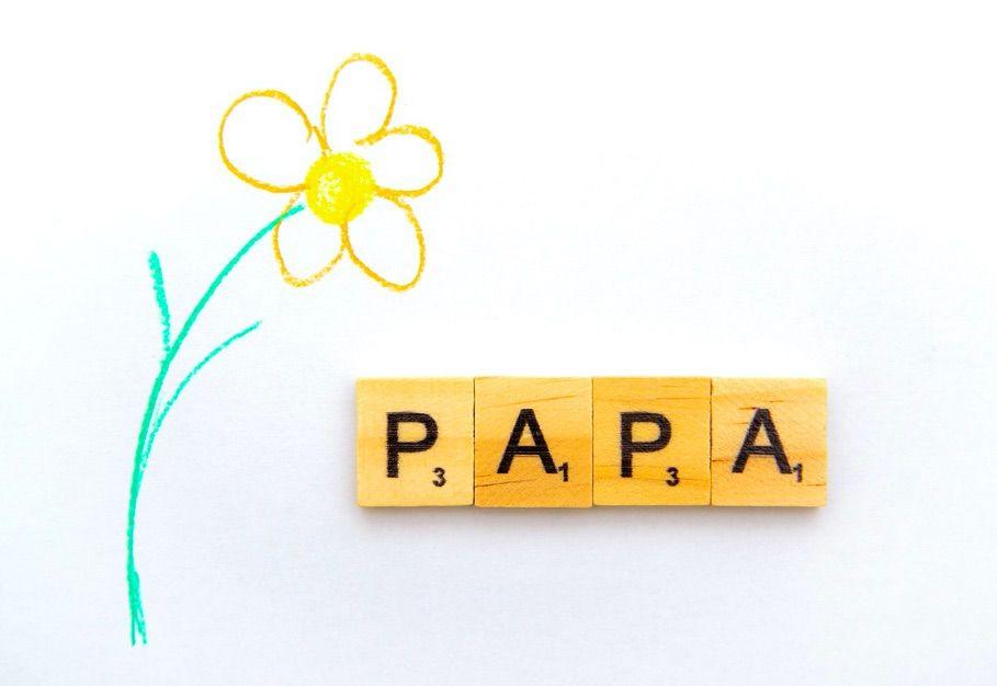 el régimen de visitas ordinario del padre en la custodia exclusiva materna