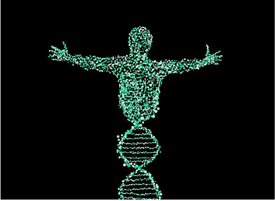 En este apartado explicamos la incidencia de la herencia genética en el hecho de padecer enfermedades menatles